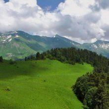 Сочинский национальный парк и его природа